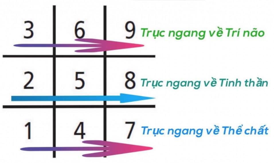 Biểu đồ ngày sinh thần số học