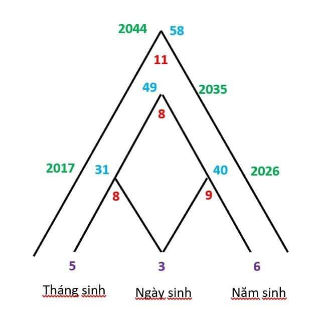 Điền ngày, tháng và năm sinh để vẽ chân đế của kim tự tháp Thần số học