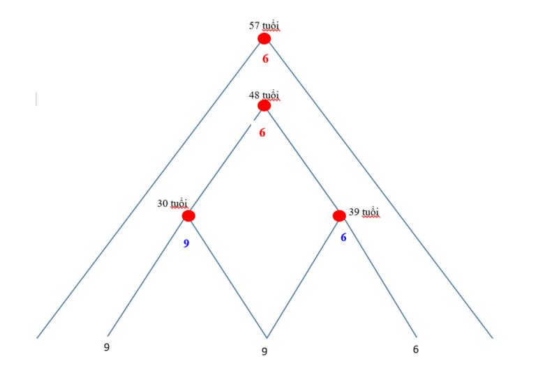 Tuổi đạt đỉnh cao của đời người qua Thần số học kim tự tháp